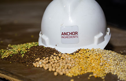 Hard hat with grain